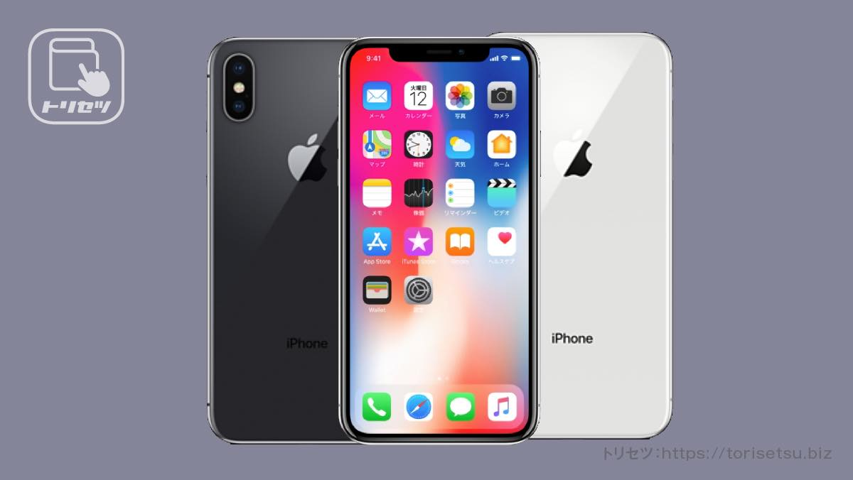 APPLE iPhone X A1902