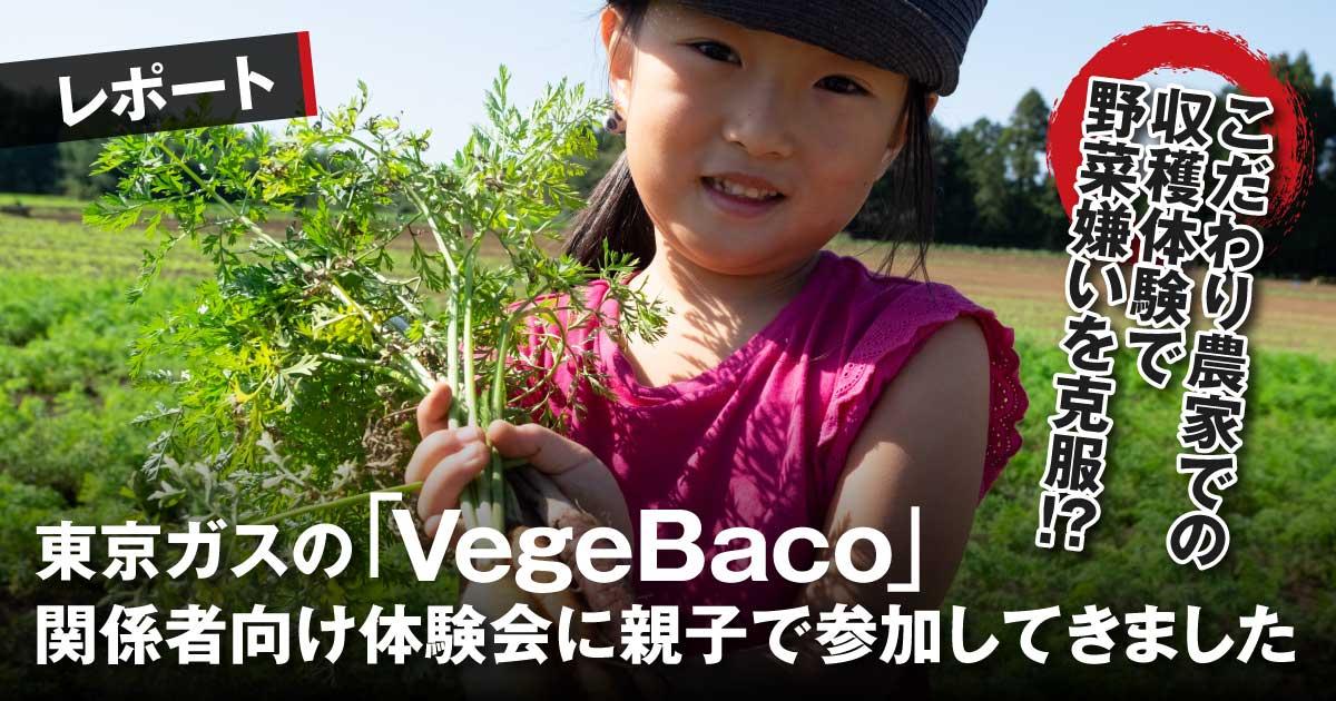 【レポート】こだわり農家での収穫体験で野菜嫌いを克服!?東京ガスのVegeBaco関係者向け体験会に親子で参加してきました