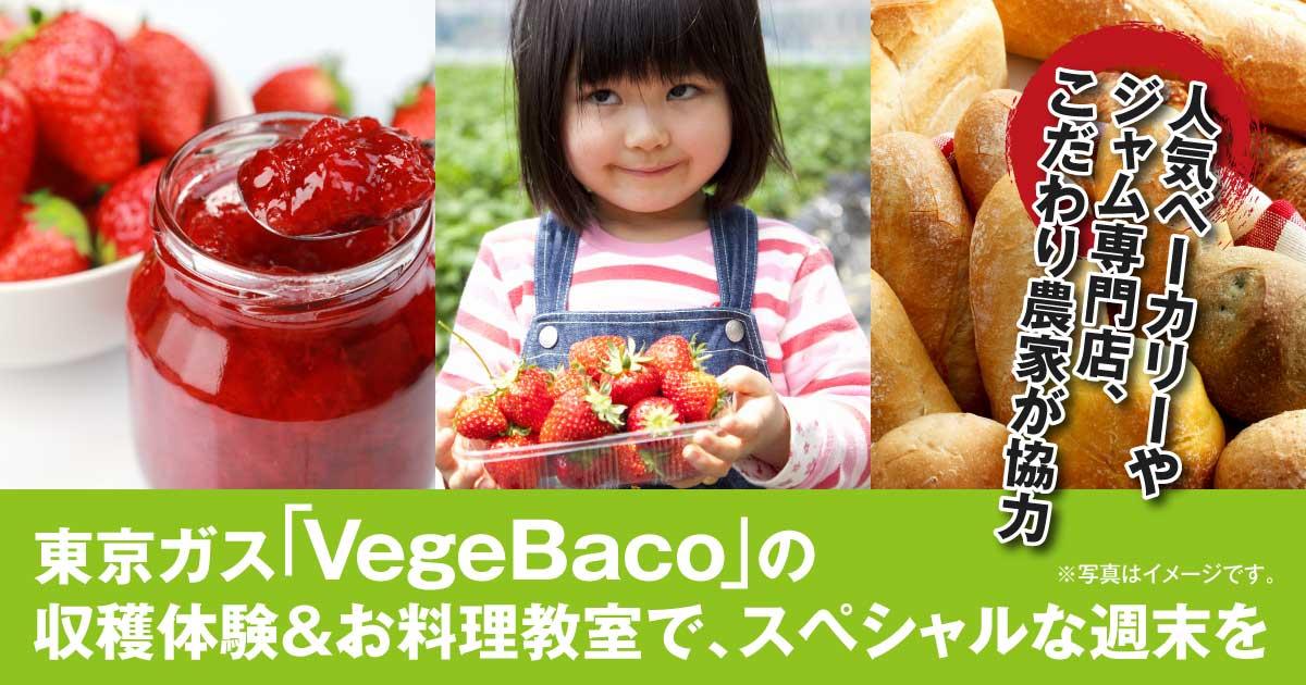 【人気ベーカリーやジャム専門店、こだわり農家が協力】東京ガス「VegeBaco ベジバコ」の収穫体験&お料理教室で、スペシャルな週末を