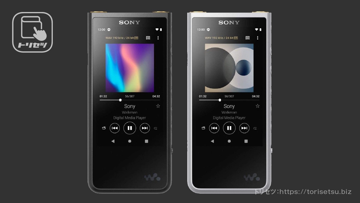 SONY WALKMAN ZX NW-ZX507