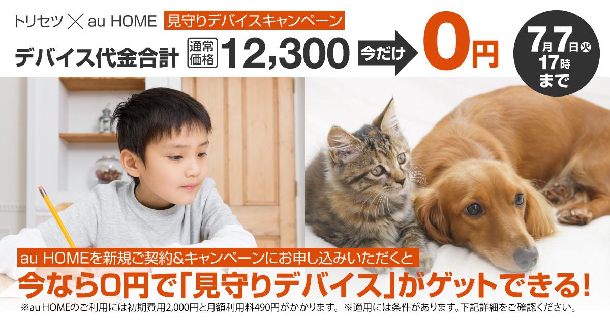 【トリセツ×au HOME 見守りデバイスキャンペーン】今なら0円で「見守りデバイス」がゲットできる!